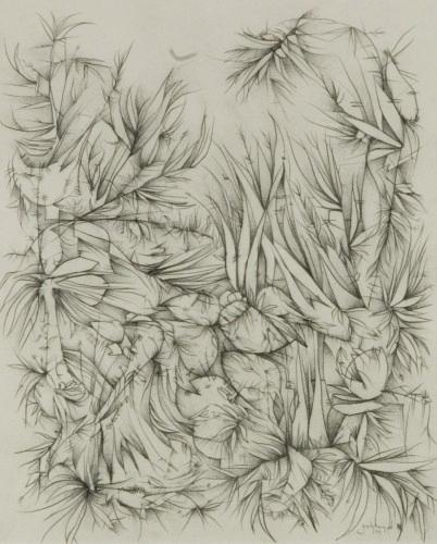 Haugerud, Bird Turf